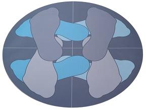 disco piedi
